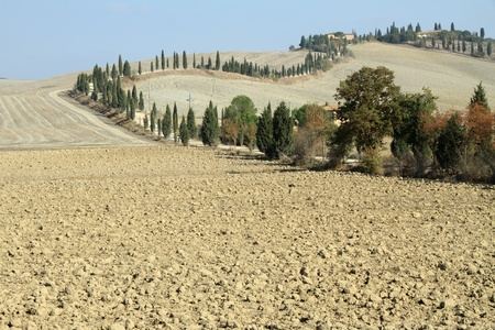 landscape with winding road with cypresses on tuscan hill, Italy photo