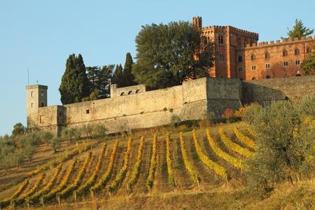 castillo de Brolio y vi�edos de Chianti, Toscana, Italia, Europa Foto de archivo - 11591999