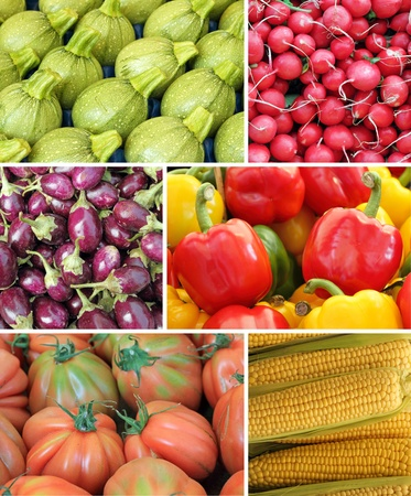 agriculture wallpaper: vegetable collage Stock Photo