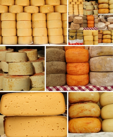 cheese collage photo