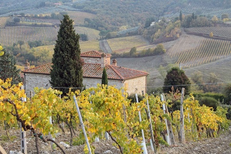 tuscan countryside with farmhouse, vineyards and hills, Italy Stock Photo
