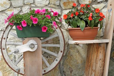 purple petunia and red impatiens in rustic pots photo