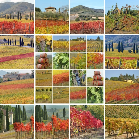 italian village: collage with spectacular fall colors of italian landscape with vineyards, Tuscany, Europe