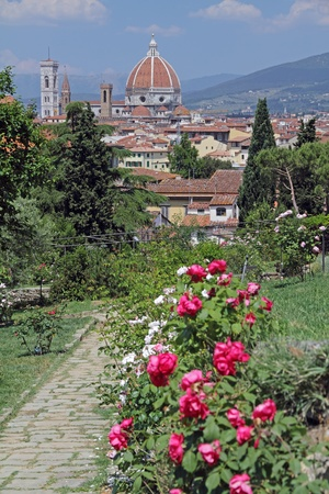 Garden of Roses near famous Piazzale in Florence , Italy,\ Europe