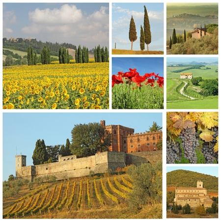 collage  with beautiful italian landscape, Tuscany, Europe