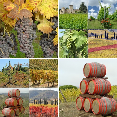 wine agriculture collage made of images from Tuscany, Italy, Europe