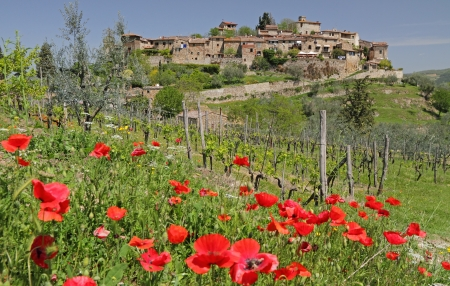 farming village: landscape with picturesque tuscan village Montefioralle on hill and poppies, Italy, Europe