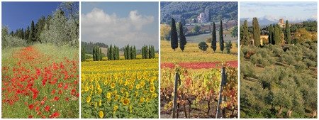 chianti: collage with fantastic tuscan landscape images in spring, summer, autumn and winter, Italy, Europe