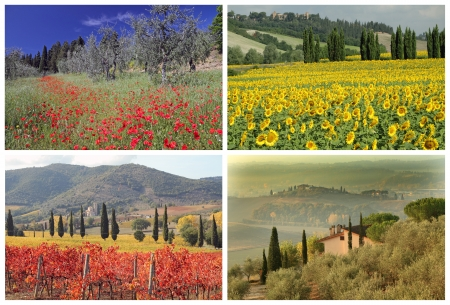 four seasons collage with spectacular tuscan landscape images, Italy, Europe photo