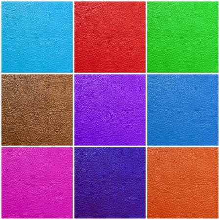 saturate: multicolor  leather collection