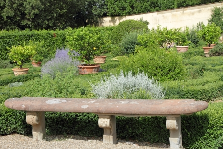 antique stone bench in historic italian garden, Villa di Castello ( called also Villa Reale, LOlmo o Il Vivaio ) with collection of 500 lemon and other citrus fruit , Florence, Tuscany, Italy, Europe photo