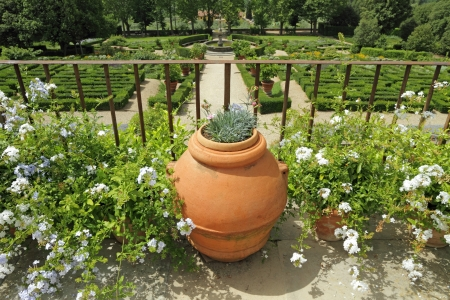 terracotta pot on terrace in garden of Villa Petraia, Florence, Tuscany, Europe photo