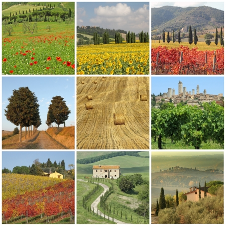 wine road: poster with images of spectacular beauty of tuscan rural landscape, Toscana, Italia, Europe