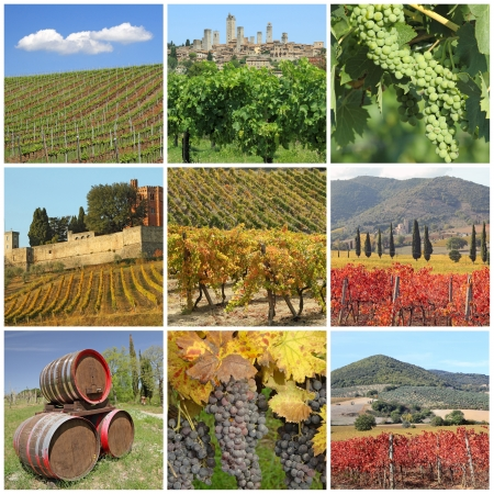 collage with scenic images of tuscan vineyards, Italy, Europe photo