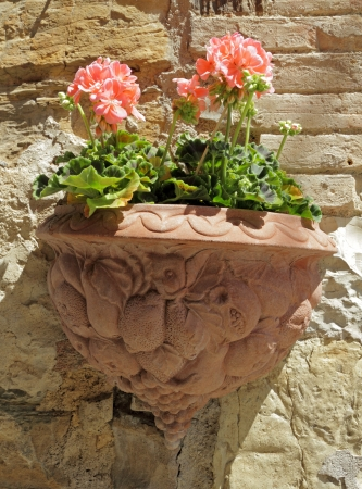 pink geranium flowers in ornamental terracotta pot hanging on stone antique wall, Tuscany, ITaly, Europe photo