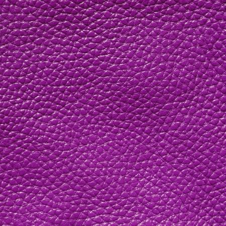 fuchsia flower: vivid  leather texture