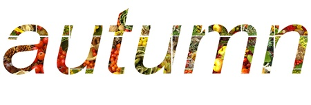 autumn lettering made of vegetable compositions photo