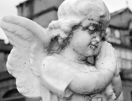 monumental cemetery: statue of little praying angel on monumental cemetery, Italy, Europe Stock Photo