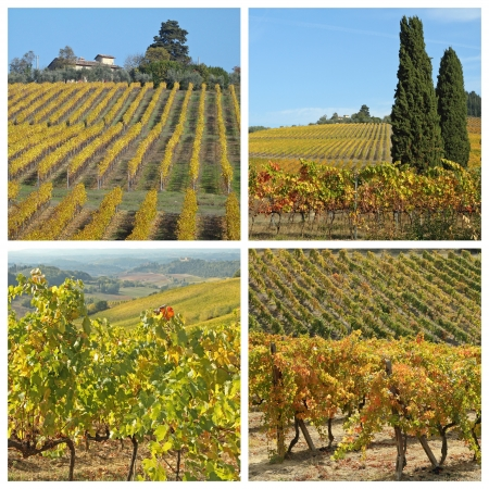collage with golden vineyards in famous tuscan wine region Chianti, Italy, Europe photo
