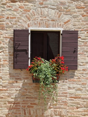 red begonia blooming  in box in window with shutters on brick wall , Emilia  Romagna, Italy, Europe