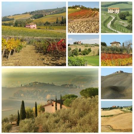 agriculture wallpaper: Bella Toscana