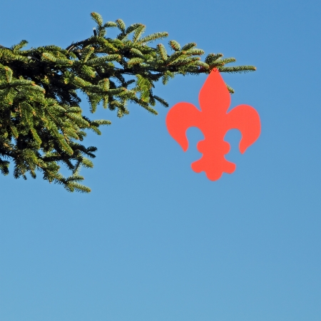 detail of christmas tree with red fleur-de-lys of Florence isolated on blue sky , Italy photo
