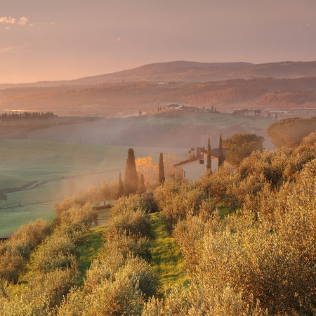 Sunrise in fantastic tuscan landscape with morning mist, Tuscany, Italy, Europe photo