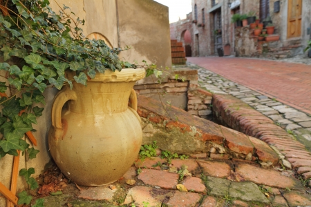 flower vase with ivy creeper and tuscan street, Italy photo