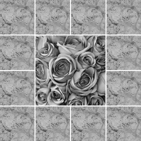composition with roses as background  photo