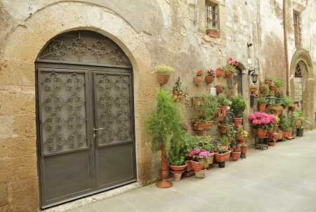 tuscan house: wrought iron gate and many flowers in tuscan village Pitigliano, Italy, Europe