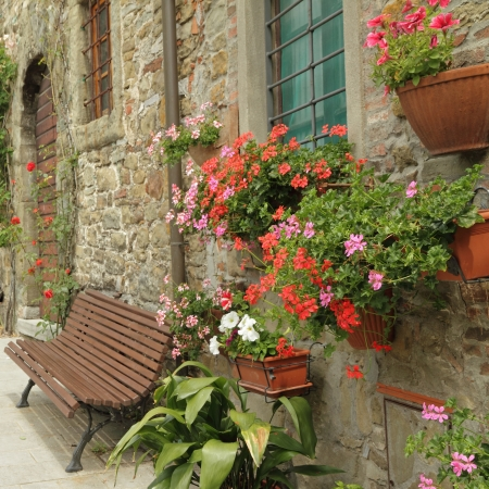 flowers in front of the tuscan house in village Volpaia, Italy, Europe Stock Photo