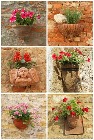 collage con macetas de terracota con flores en la pared vieja, Toscana, Italia, Europa photo