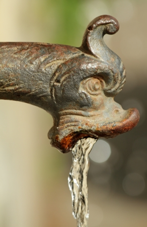 grotesque: antique water faucet, detail of urban water source , Florence, Tuscany, Italy, Europe