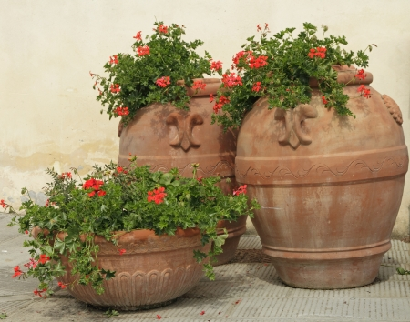elegant traditional terracotta vases with geranium flowers on tuscan piazza, Italy photo