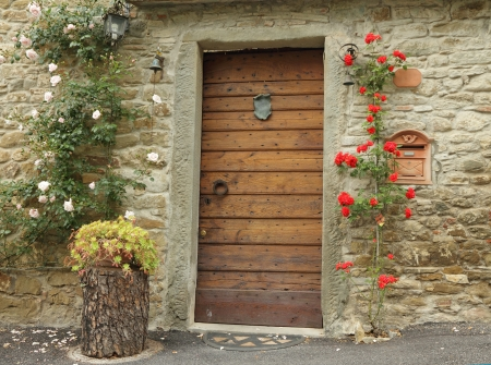 front door decorated with climbing roses in old tuscan village, Italy photo