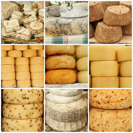 cheese collage made of  images from farmers market, Europe photo