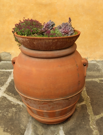 big flower: elegant  tuscan  plant container, Italy  Stock Photo
