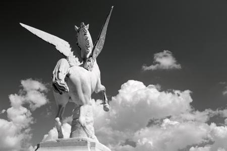 legendary pegasus figure  galloping towards the sky photo