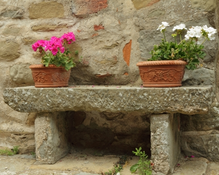 flowerpots with colorful geranium plants in ceramic boxes on stone bench, Tuscany photo