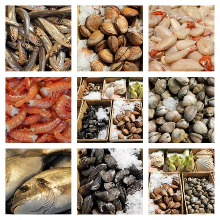 molluscs: seafood display  collage, images from fish market