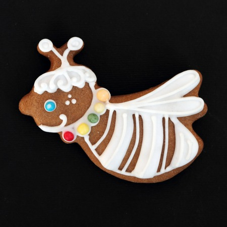 homemade  gingerbread cookie in shape of the bee isolated on black photo