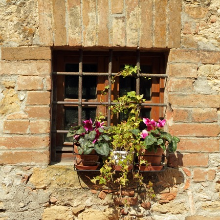 window protected with grating and flowering plants on windowsill, Tuscany  photo