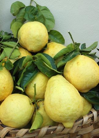 positano: basket of fresh lemons on Amalfi Coast, Italy Stock Photo