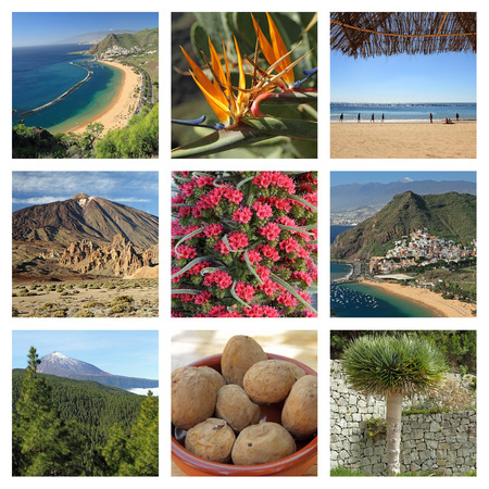 canarian: images of fantastic Tenerife island - collage
