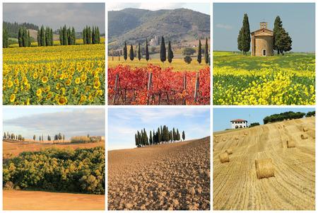 wonderful tuscan landscape collage  photo