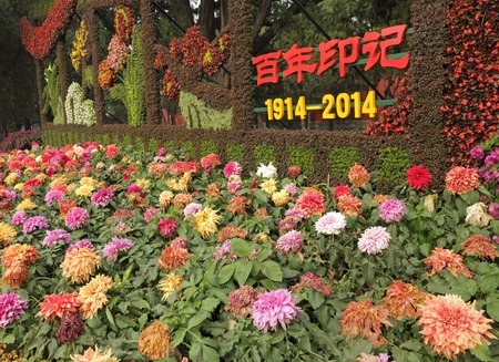 yat sen: The Beijing Chrysanthemum Festival in  Zhongshan Park,chrysanthemums are one of the four traditional flowers of China.