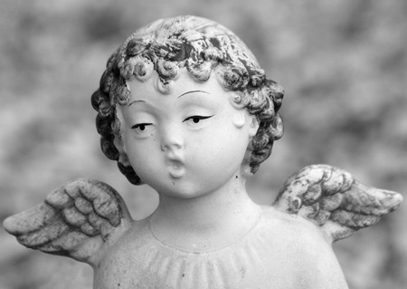close up of figurine of singing little  winged angel photo