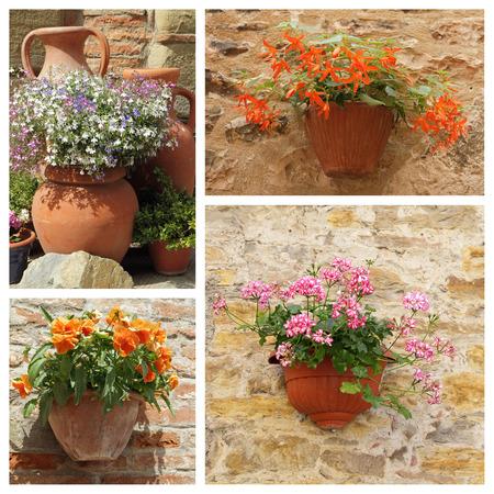 greek pot: classiche fioriere in ceramica con fiori - gruppo di immagini