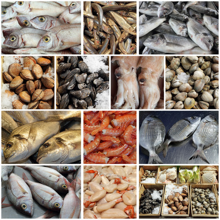 seafood display  collage, images from fish market in european countries photo