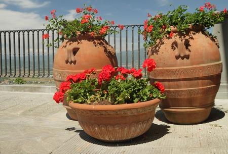 planters: flowering red geranium plants in retro terracotta planters standing on balcony, Italy, Europe